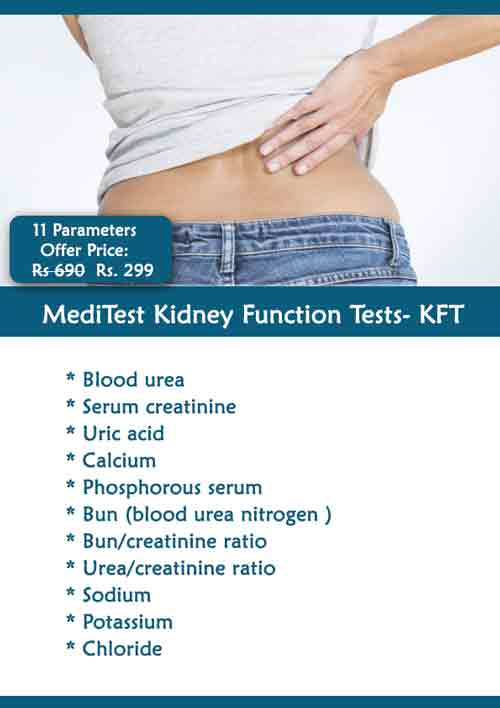 Kft Test Cost In Delhi Ncr Rs 299 Rft Kidney Function Test